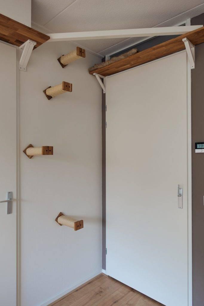 Trappetjes tussen de deuren omhoog en naar beneden voor de klimmuur